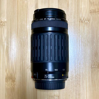 Canon - Canon EF75-300mm 1:4-5.6