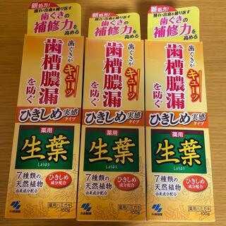 小林製薬 - 薬用 生葉歯磨き粉