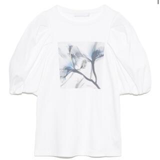 フレイアイディー(FRAY I.D)のCELFORD Tシャツ(Tシャツ(半袖/袖なし))