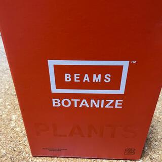ビームス(BEAMS)のBOTANIZE MEDICOM TOY BEAMS ボタナイズ ビームス(プランター)