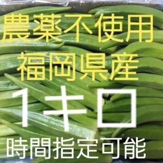 福岡県産☆オクラ1キロ 農薬不使用栽培