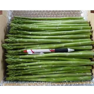 細アスパラガス 1kg 採りたて野菜