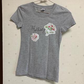Hollister - ホリスター  HOLLISTER  Tシャツ フラワー ロゴ