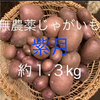 カラフルじゃがいも 紫月(野菜)