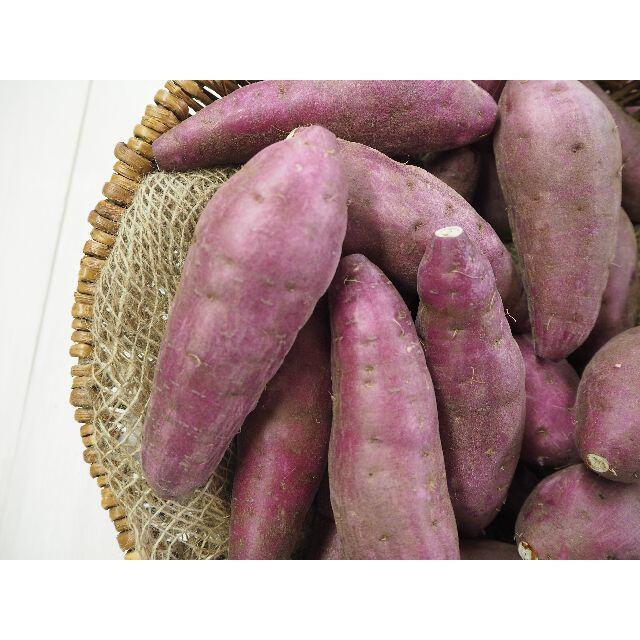 サツマイモ 紅はるか 約1K 熊本県大津産 お試しコンパクト便 食品/飲料/酒の食品(野菜)の商品写真