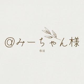 @みーちゃん様専用☆多肉植物(その他)