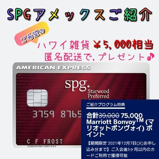 SPGアメックス 紹介 ハワイカレンダー2冊プレゼント(その他)