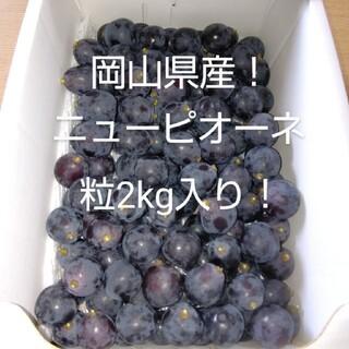 岡山県産ニューピオーネ粒2kg