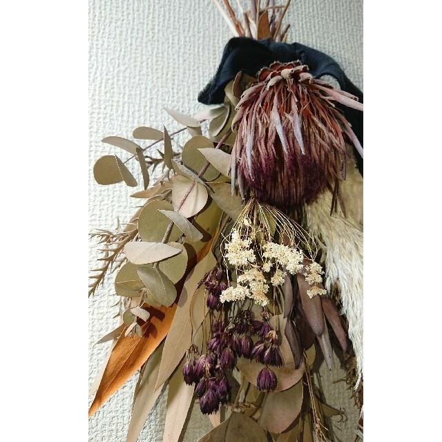 プロテアの秋色スワッグ   ハンドメイドのフラワー/ガーデン(ドライフラワー)の商品写真