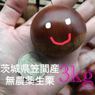 茨城県笠間産無農薬生栗2kg(フルーツ)