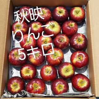 山形産地直送 ご家庭用訳ありリンゴ 5キロ『秋映(あきばえ)』数量限定