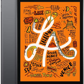 iPad - iPad mini 5 Wi-Fi+Cellular64GB - スペースグレイ