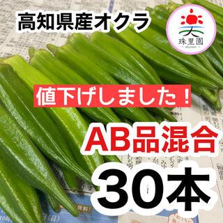 高知県産 オクラ おくら 30本 即購入OK 産地直送 鮮度抜群 夏野菜