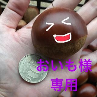 数量限定☆生栗1kg 食べ比べセット