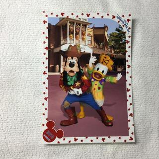 ディズニー(Disney)のスペフォ ディズニー ハロウィン グーフィー  ドナルド(印刷物)
