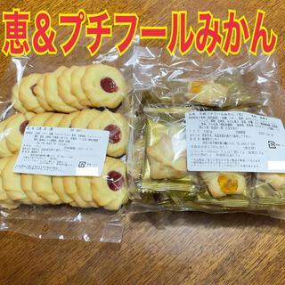 【大人気!】湘南クッキー プチフールみかん&恵セット‼️