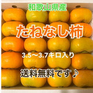 M4 和歌山県産 たねなし柿 ご家庭用
