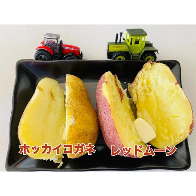 北海道本別町産 紅白じゃがいも ホッカイコガネ&レッドムーン 計10キロ 食品/飲料/酒の食品(野菜)の商品写真