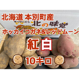 北海道本別町産 紅白じゃがいも ホッカイコガネ&レッドムーン 計10キロ