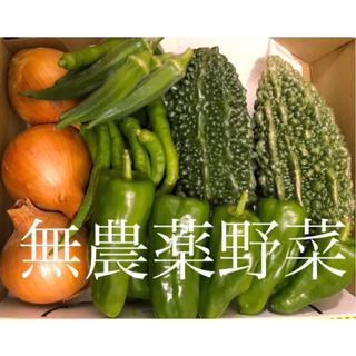無農薬野菜詰め合わせ