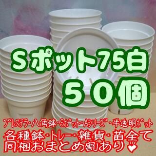 Sポット75 白 50個 2.5号 丸型 スリット鉢プレステラ多肉植物プラ鉢(プランター)