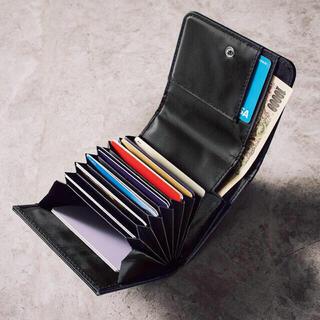 ESTNATION - 雑誌付録 ESTNATION 蛇腹式ミニ財布