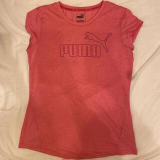 プーマ(PUMA)のPUMA ドライTシャツ ピンク(Tシャツ(半袖/袖なし))