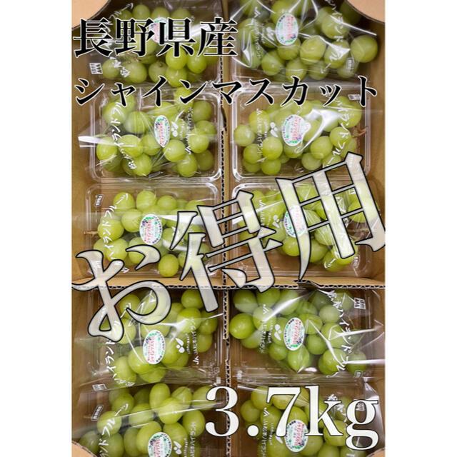 お得用!!長野県産【シャインマスカット】秀品 10パック 約3.7kg! 食品/飲料/酒の食品(フルーツ)の商品写真