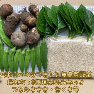 お値下げ✨玄米(7〜8分づき)と無農薬野菜*3種類の詰め合わせ*つるむらさき等*
