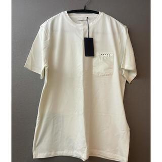 プラダ(PRADA)のPRADA新品TシャツMサイズ(シャツ)