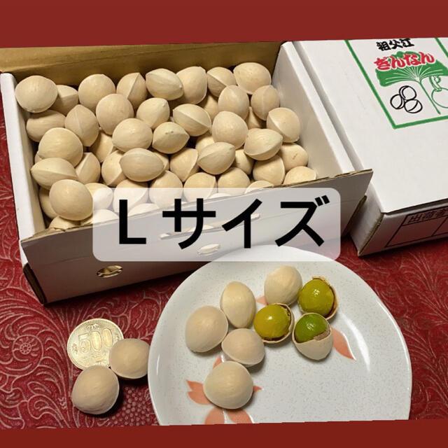 名産地愛知県稲沢市祖父江銀杏 1Lサイズ 食品/飲料/酒の食品(野菜)の商品写真