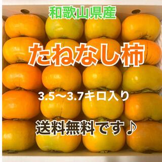 M8 和歌山県産 たねなし柿 ご家庭用