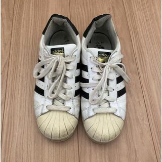 adidas - adidas スーパースター 24.0cm