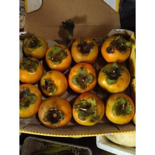 自然栽培 無農薬柿の実 12個(フルーツ)