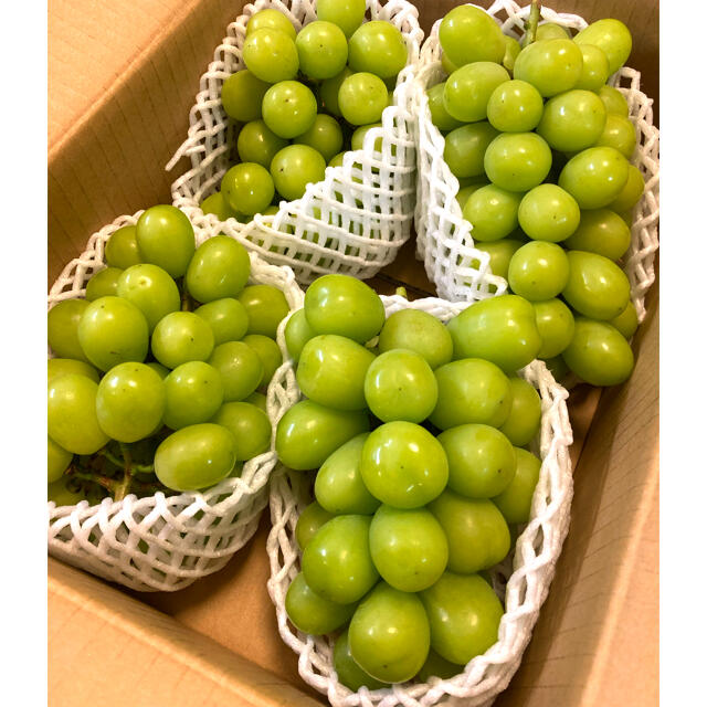 信州産シャインマスカット 2キロ 食品/飲料/酒の食品(フルーツ)の商品写真