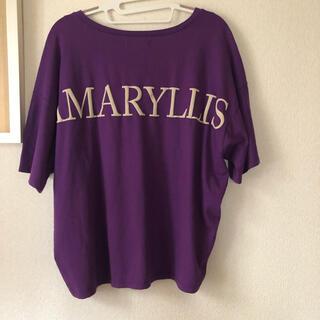 スコットクラブ(SCOT CLUB)の美品 scot club 半袖Tシャツ FREE 紫 Vネック(Tシャツ(半袖/袖なし))