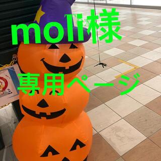 moli 様 専用ページ男女兼用帽子 ハット (ハット)