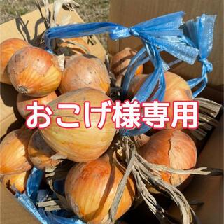玉ねぎ10キロ入+お芋(野菜)