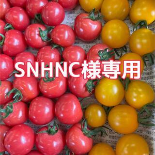 ピンキーときら〜ず(野菜)