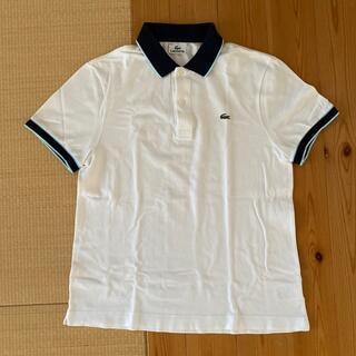 ラコステ(LACOSTE)のLACOSTE ラコステ トップス ポロシャツ(ポロシャツ)