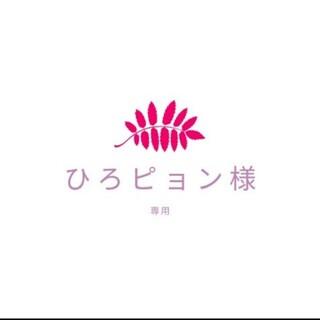 ひろピョン様専用☆多肉植物(その他)