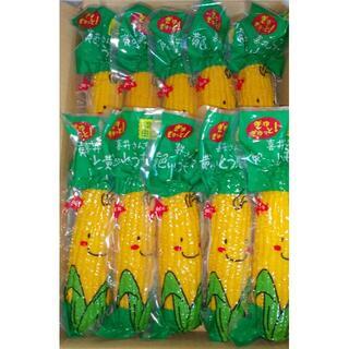北海道産 とうもろこし10本(レトルトパック)(野菜)