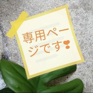 専用ページ❗沖縄マングローブ苗(その他)