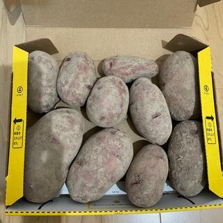値下げ!北海道 十勝産 レッドムーン 1.6キロ(野菜)