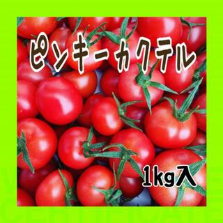 【好評‼️】新鮮トマトをお届けします。ピンキーカクテル❗️(野菜)