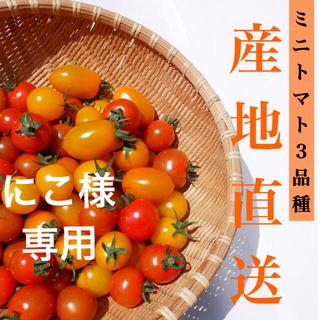 【赤&ミミ】2kg にこ様専用(野菜)