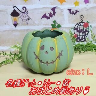 【パンプキンポットL:グリーン】植木鉢 プランター 多肉植物 プレステラ プラ鉢(プランター)