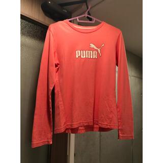 プーマ(PUMA)のPUMA Tシャツ 長袖 濃ピンク(Tシャツ(長袖/七分))