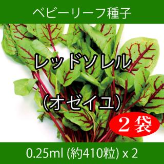 ベビーリーフ種子 B-50 レッドソレル(オゼイユ) 0.25ml x 2袋(野菜)