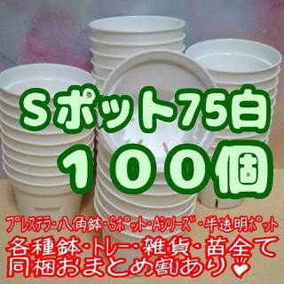 Sポット75 白 100個 2.5号 丸型 スリット鉢プレステラ多肉植物プラ鉢(プランター)